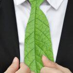 L'écologie et le business, ça peut être compatible ?